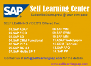 SAP EWM Self Learning – Learn at your own pace.
