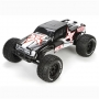 ECX Ruckus 1/10 2WD BL RTR Monster Truck Black White ECX03009